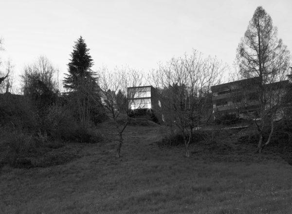 Lecture: 20.10.16, Klimafitter Wald, Vienna